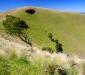 Mt Noorat