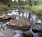 Campaspe River