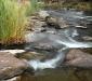 Campaspe River #2